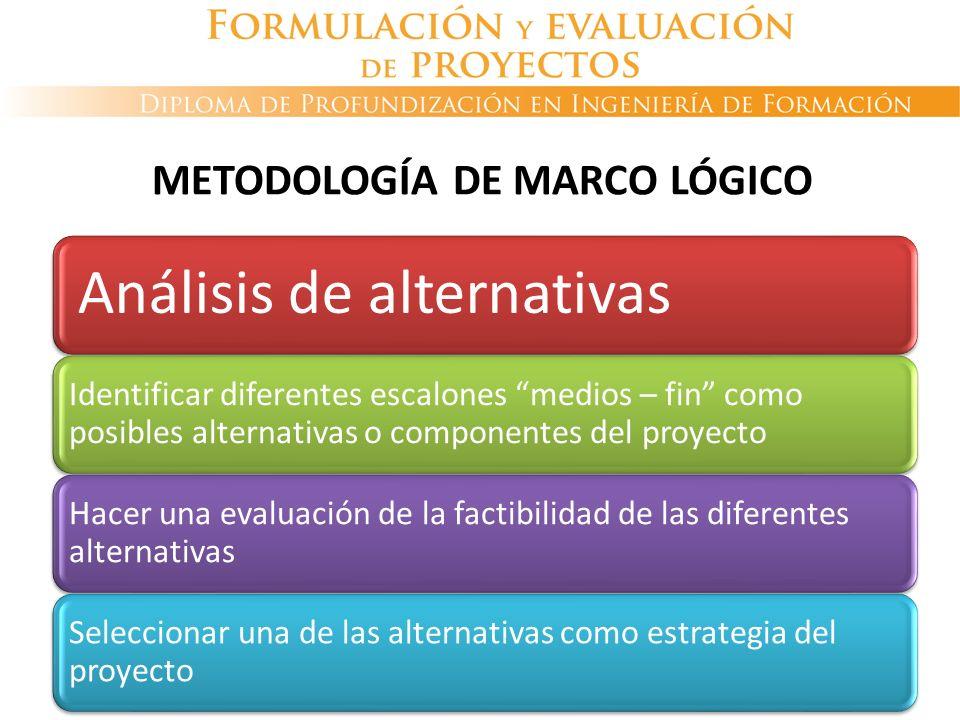 Análisis de alternativas Identificar diferentes escalones medios – fin como posibles alternativas o componentes del proyecto Hacer una evaluación de l