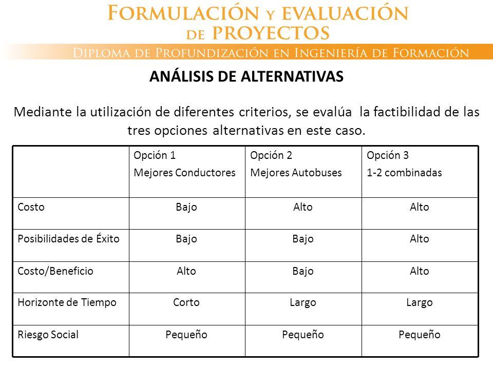 ANÁLISIS DE ALTERNATIVAS Mediante la utilización de diferentes criterios, se evalúa la factibilidad de las tres opciones alternativas en este caso. Pe