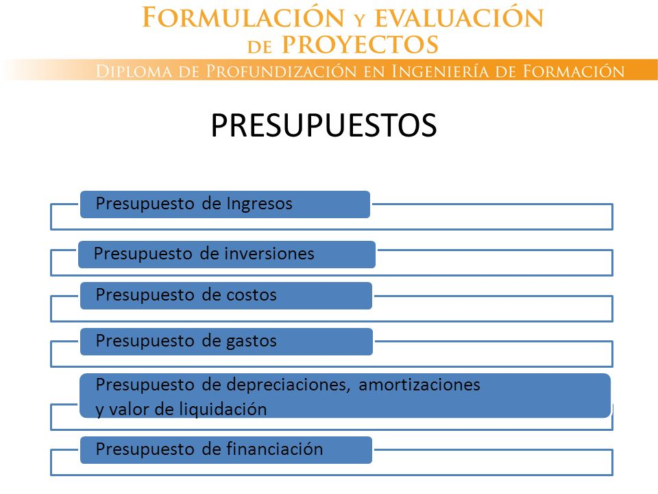 Presupuesto de IngresosPresupuesto de inversionesPresupuesto de costosPresupuesto de gastos Presupuesto de depreciaciones, amortizaciones y valor de l