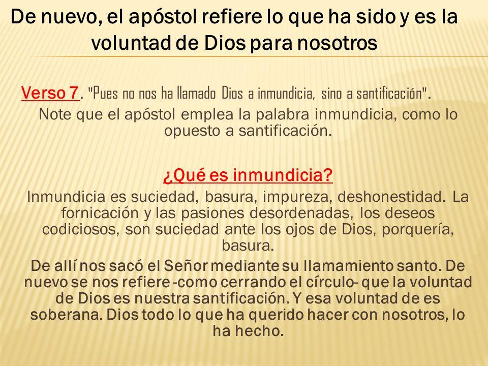 Verso 7.