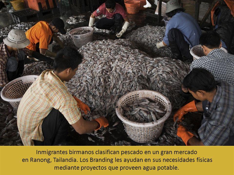 Inmigrantes birmanos clasifican pescado en un gran mercado en Ranong, Tailandia. Los Branding les ayudan en sus necesidades físicas mediante proyectos