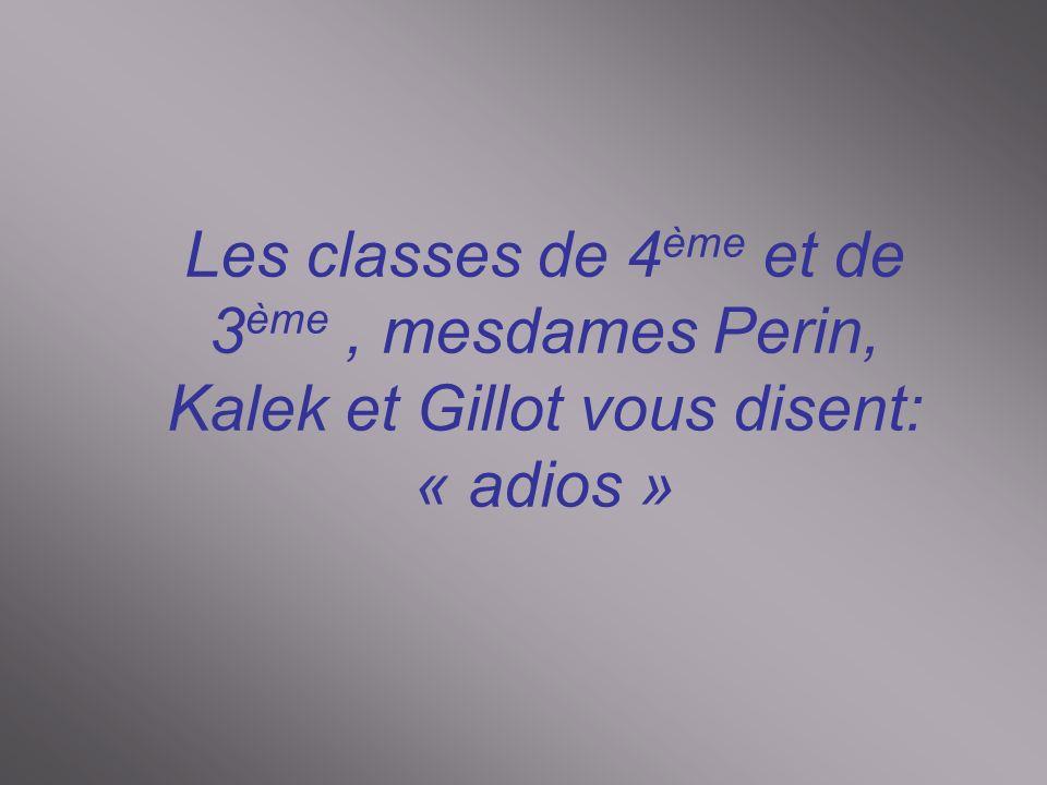 Les classes de 4 ème et de 3 ème, mesdames Perin, Kalek et Gillot vous disent: « adios »