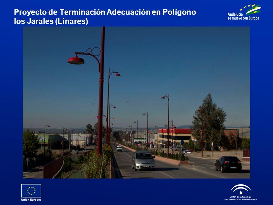 Proyecto de Terminación Adecuación en Polígono los Jarales (Linares)