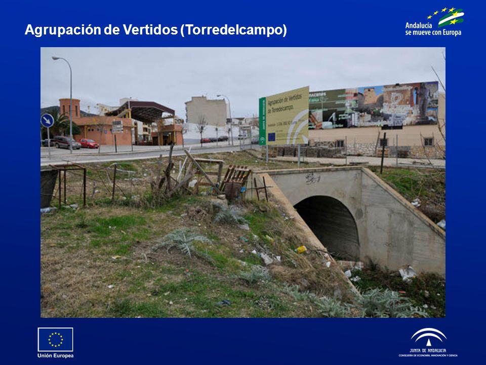 Agrupación de Vertidos (Torredelcampo)
