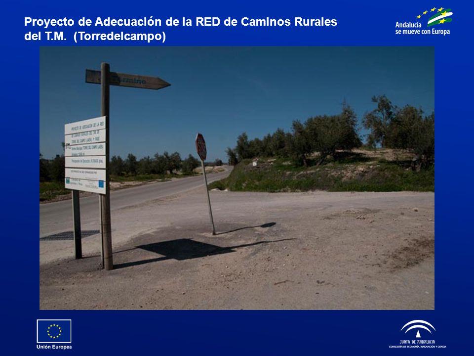 Proyecto de Adecuación de la RED de Caminos Rurales del T.M. (Torredelcampo)