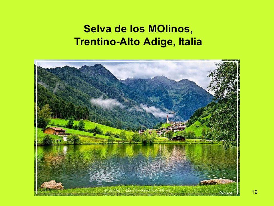 19 Selva de los MOlinos, Trentino-Alto Adige, Italia
