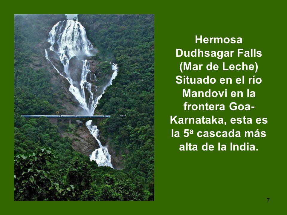 7 Hermosa Dudhsagar Falls (Mar de Leche) Situado en el río Mandovi en la frontera Goa- Karnataka, esta es la 5 a cascada más alta de la India.