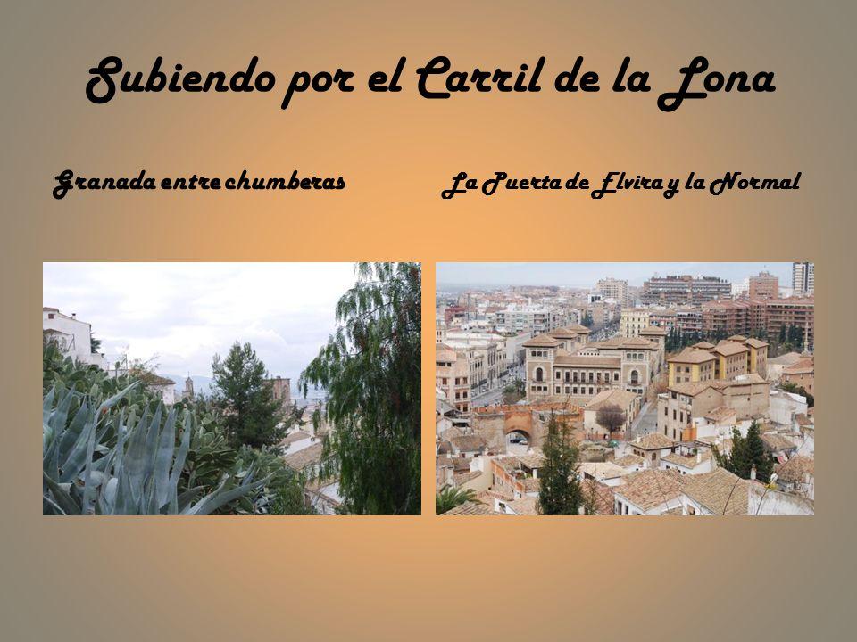 Subiendo por el Carril de la Lona Granada entre chumberas La Puerta de Elvira y la Normal