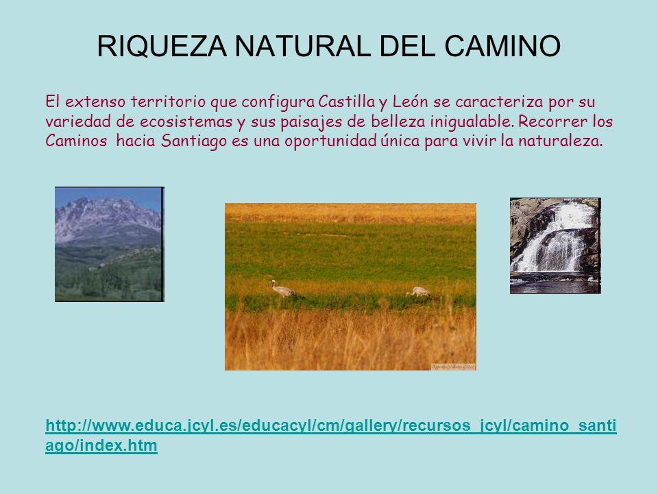 RIQUEZA NATURAL DEL CAMINO El extenso territorio que configura Castilla y León se caracteriza por su variedad de ecosistemas y sus paisajes de belleza