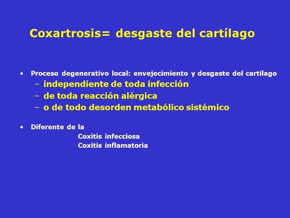 Coxartrosis= desgaste del cartílago Proceso degenerativo local: envejecimiento y desgaste del cartílago –independiente de toda infección –de toda reac