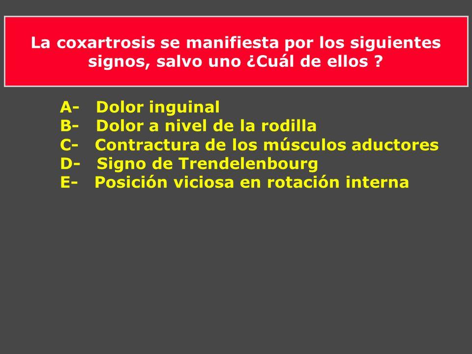 La coxartrosis se manifiesta por los siguientes signos, salvo uno ¿Cuál de ellos ? A- Dolor inguinal B- Dolor a nivel de la rodilla C- Contractura de