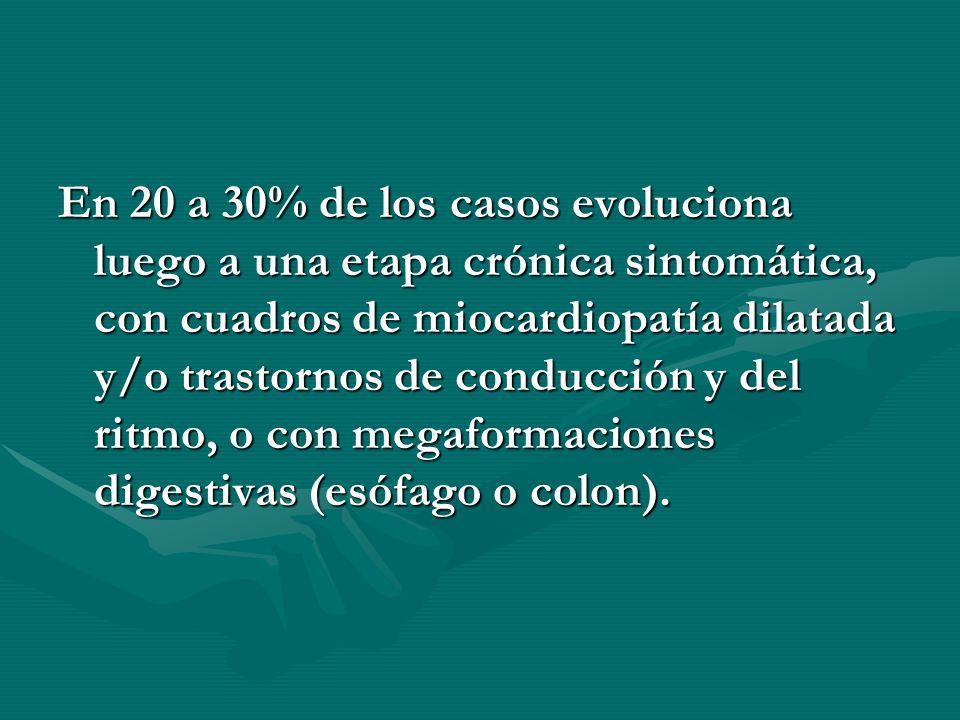 En 20 a 30% de los casos evoluciona luego a una etapa crónica sintomática, con cuadros de miocardiopatía dilatada y/o trastornos de conducción y del r