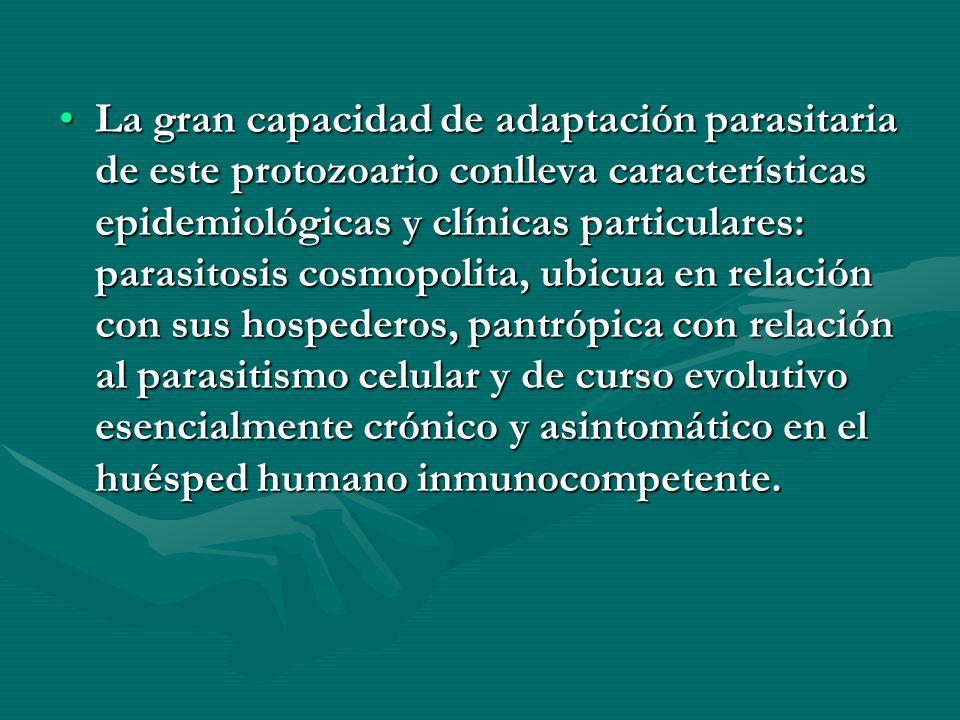 La gran capacidad de adaptación parasitaria de este protozoario conlleva características epidemiológicas y clínicas particulares: parasitosis cosmopol