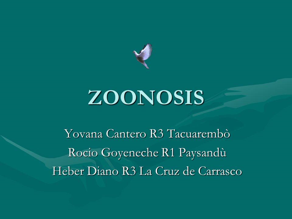 ZOONOSIS Yovana Cantero R3 Tacuarembò Rocio Goyeneche R1 Paysandù Heber Diano R3 La Cruz de Carrasco