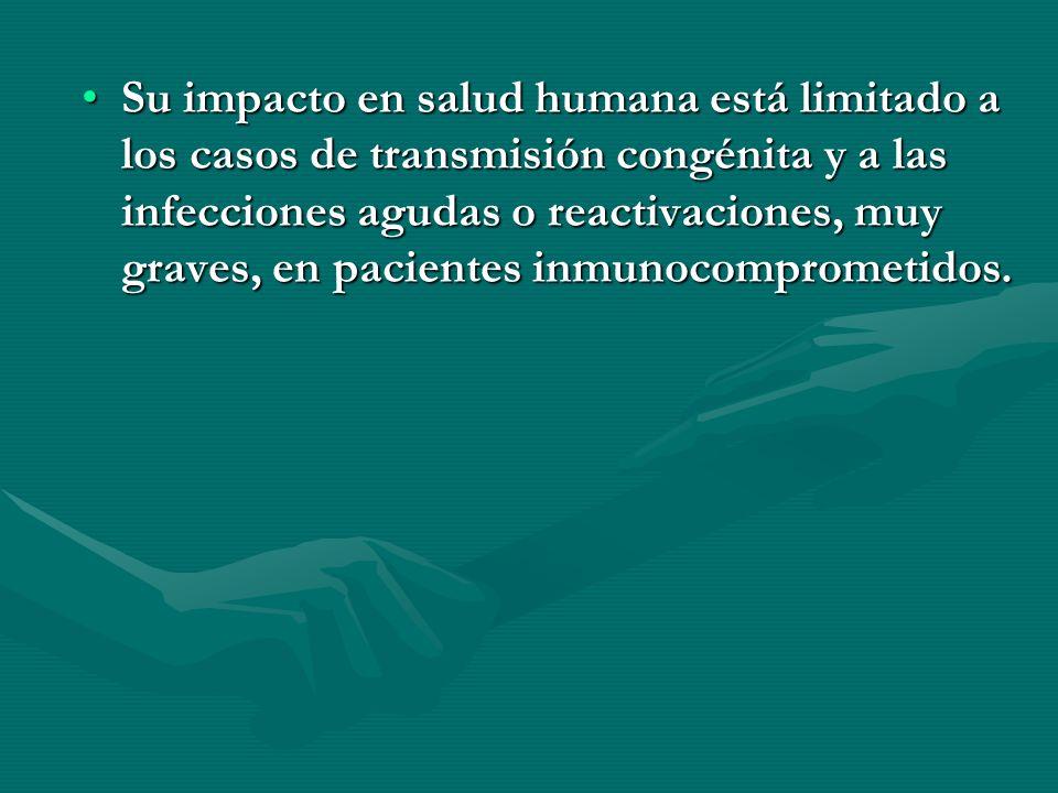 Su impacto en salud humana está limitado a los casos de transmisión congénita y a las infecciones agudas o reactivaciones, muy graves, en pacientes in