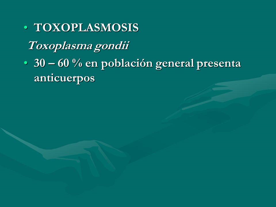 TOXOPLASMOSISTOXOPLASMOSIS Toxoplasma gondii Toxoplasma gondii 30 – 60 % en población general presenta anticuerpos30 – 60 % en población general prese