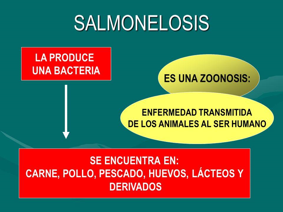 SALMONELOSIS ES UNA ZOONOSIS: ENFERMEDAD TRANSMITIDA DE LOS ANIMALES AL SER HUMANO LA PRODUCE UNA BACTERIA SE ENCUENTRA EN: CARNE, POLLO, PESCADO, HUE