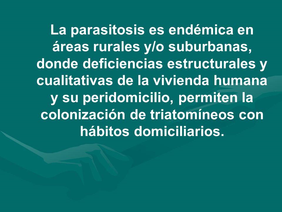 La parasitosis es endémica en áreas rurales y/o suburbanas, donde deficiencias estructurales y cualitativas de la vivienda humana y su peridomicilio,