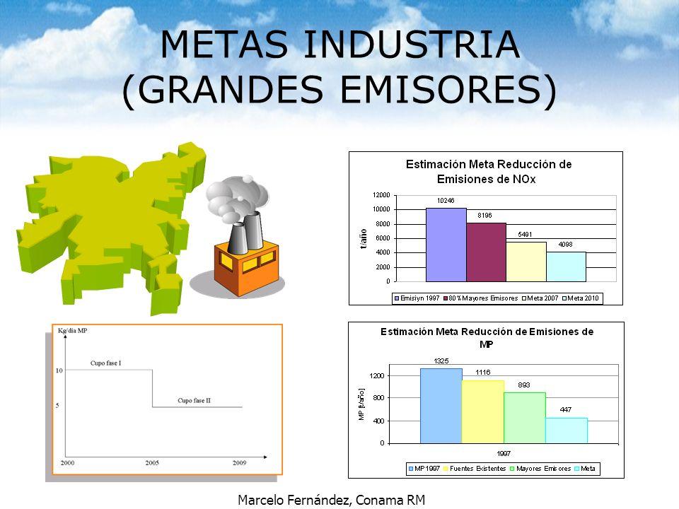 Marcelo Fernández, Conama RM METAS INDUSTRIA (GRANDES EMISORES)