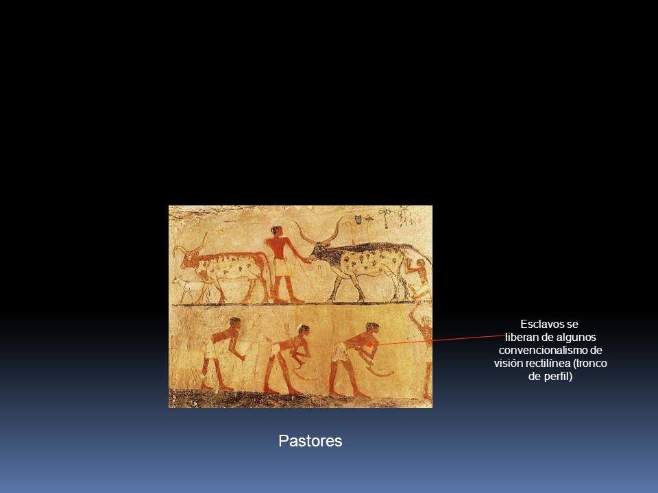 Pastores Esclavos se liberan de algunos convencionalismo de visión rectilínea (tronco de perfil)