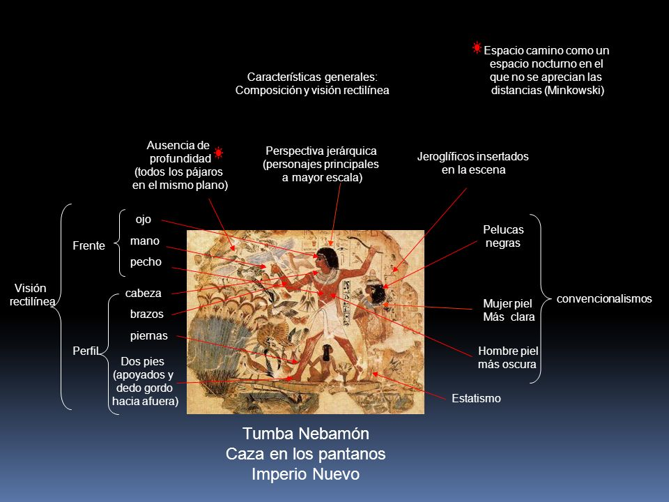 Tumba Nebamón Caza en los pantanos Imperio Nuevo Características generales: Composición y visión rectilínea Perspectiva jerárquica (personajes princip