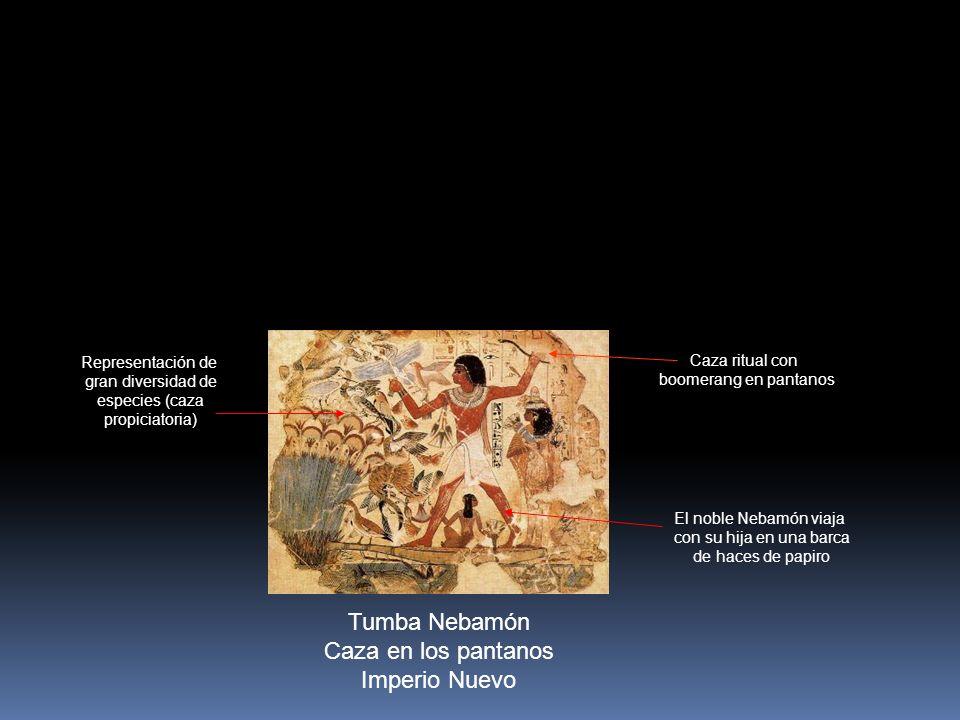 Tumba Nebamón Caza en los pantanos Imperio Nuevo Caza ritual con boomerang en pantanos El noble Nebamón viaja con su hija en una barca de haces de papiro Representación de gran diversidad de especies (caza propiciatoria)