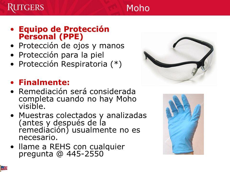 Moho Equipo de Protección Personal (PPE)Equipo de Protección Personal (PPE) Protección de ojos y manos Protección para la piel Protección Respiratoria