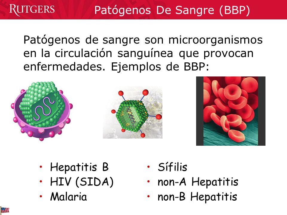 Patógenos De Sangre (BBP) Patógenos de sangre son microorganismos en la circulación sanguínea que provocan enfermedades. Ejemplos de BBP: Hepatitis B