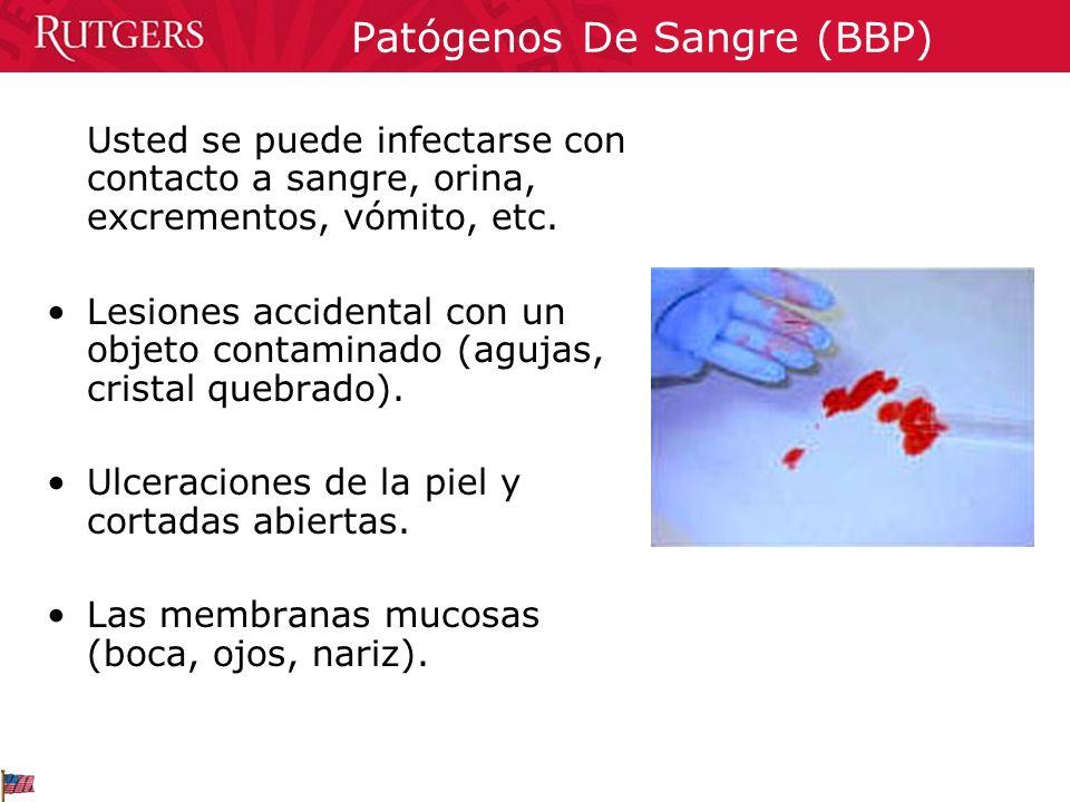 Patógenos De Sangre (BBP) Usted se puede infectarse con contacto a sangre, orina, excrementos, vómito, etc. Lesiones accidental con un objeto contamin