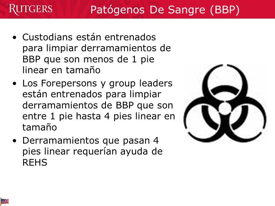 Patógenos De Sangre (BBP) Custodians están entrenados para limpiar derramamientos de BBP que son menos de 1 pie linear en tamaño Los Forepersons y gro