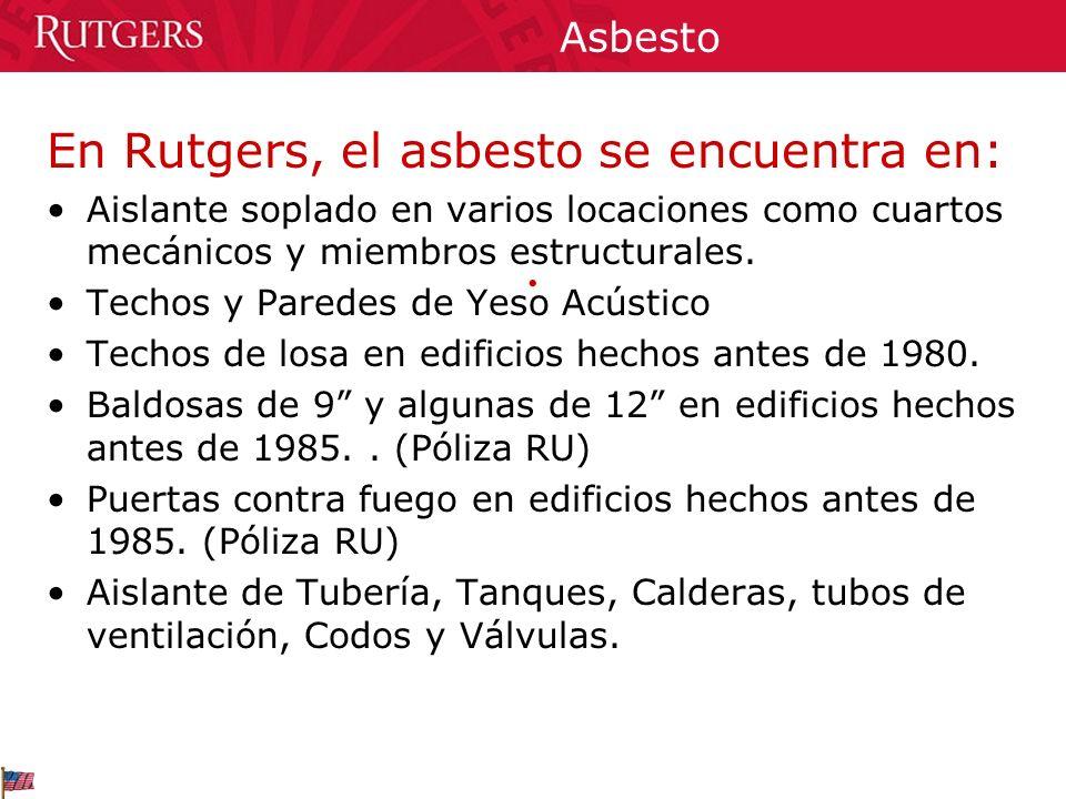 Asbesto En Rutgers, el asbesto se encuentra en: Aislante soplado en varios locaciones como cuartos mecánicos y miembros estructurales. Techos y Parede