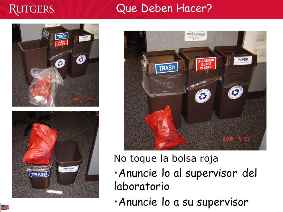 No toque la bolsa roja Anuncie lo al supervisor del laboratorio Anuncie lo a su supervisor Que Deben Hacer?