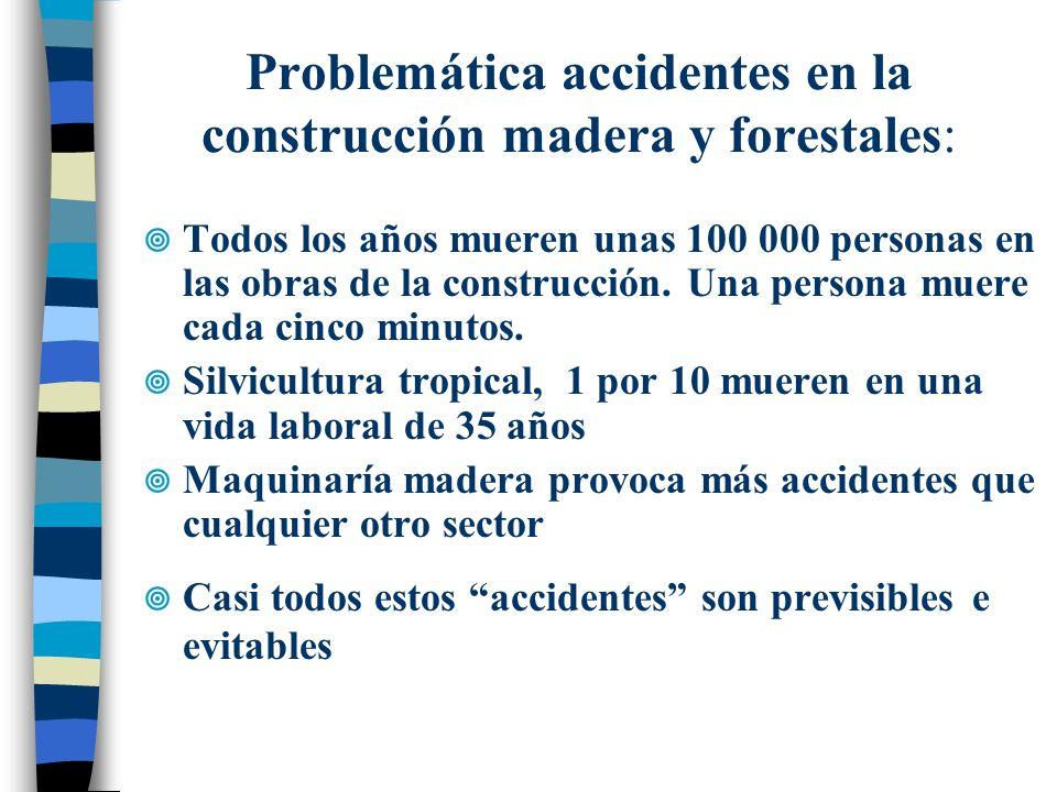 Problemática accidentes en la construcción madera y forestales: Todos los años mueren unas 100 000 personas en las obras de la construcción. Una perso