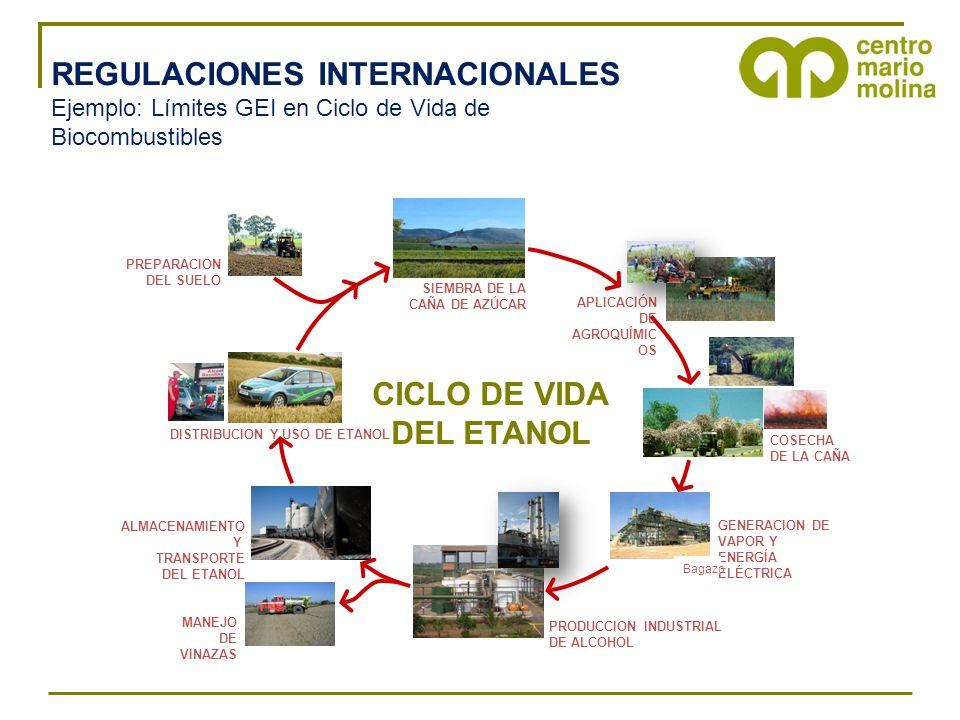 REGULACIONES INTERNACIONALES Ejemplo: Límites GEI en Ciclo de Vida de Biocombustibles PREPARACION DEL SUELO SIEMBRA DE LA CAÑA DE AZÚCAR COSECHA DE LA CAÑA APLICACIÓN DE AGROQUÍMIC OS GENERACION DE VAPOR Y ENERGÍA ELÉCTRICA PRODUCCION INDUSTRIAL DE ALCOHOL MANEJO DE VINAZAS ALMACENAMIENTO Y TRANSPORTE DEL ETANOL DISTRIBUCION Y USO DE ETANOL CICLO DE VIDA DEL ETANOL Bagazo