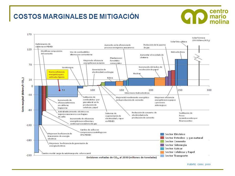 COSTOS MARGINALES DE MITIGACIÓN