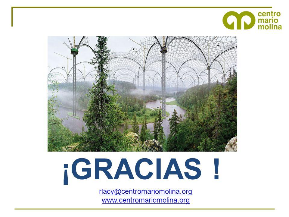 rlacy@centromariomolina.org www.centromariomolina.org ¡GRACIAS !