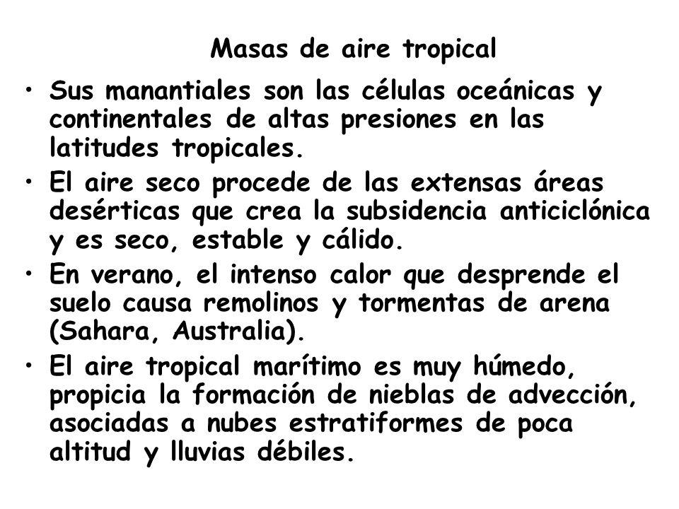 Masas de aire tropical Sus manantiales son las células oceánicas y continentales de altas presiones en las latitudes tropicales. El aire seco procede