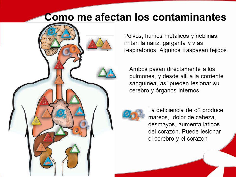 Como me afectan los contaminantes Polvos, humos metálicos y neblinas: irritan la nariz, garganta y vías respiratorios. Algunos traspasan tejidos Ambos