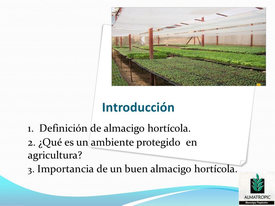 Introducción 1. Definición de almacigo hortícola. 2. ¿Qué es un ambiente protegido en agricultura? 3. Importancia de un buen almacigo hortícola.