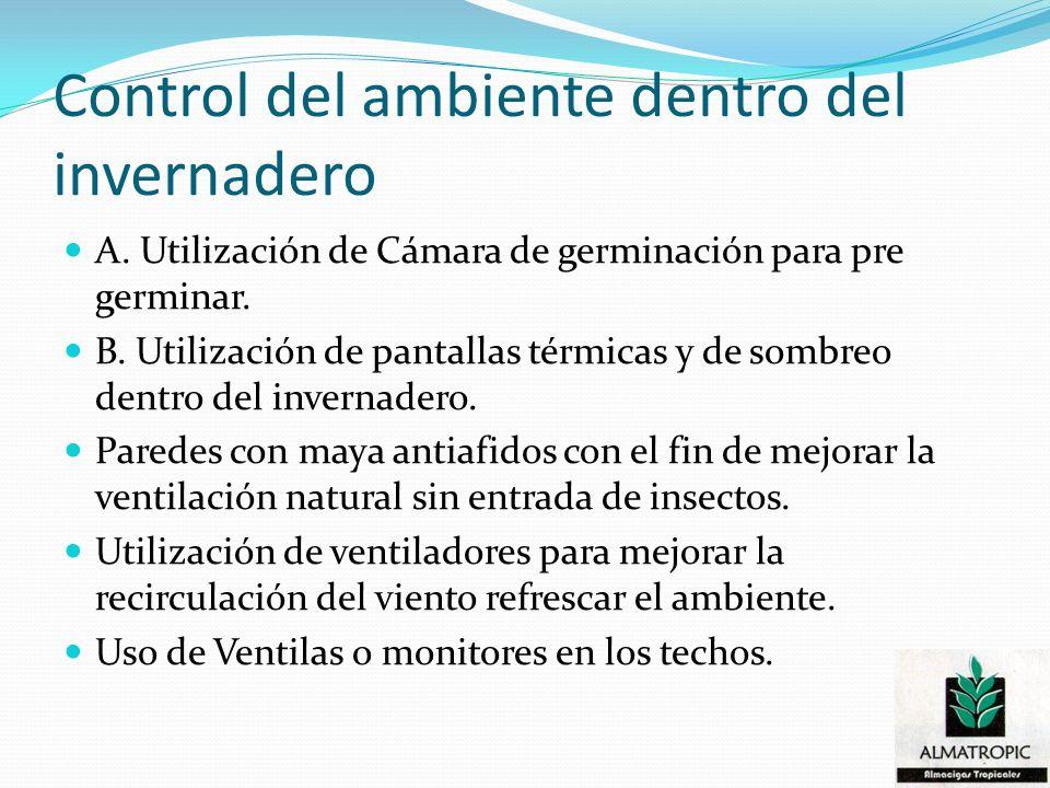 Control del ambiente dentro del invernadero A. Utilización de Cámara de germinación para pre germinar. B. Utilización de pantallas térmicas y de sombr