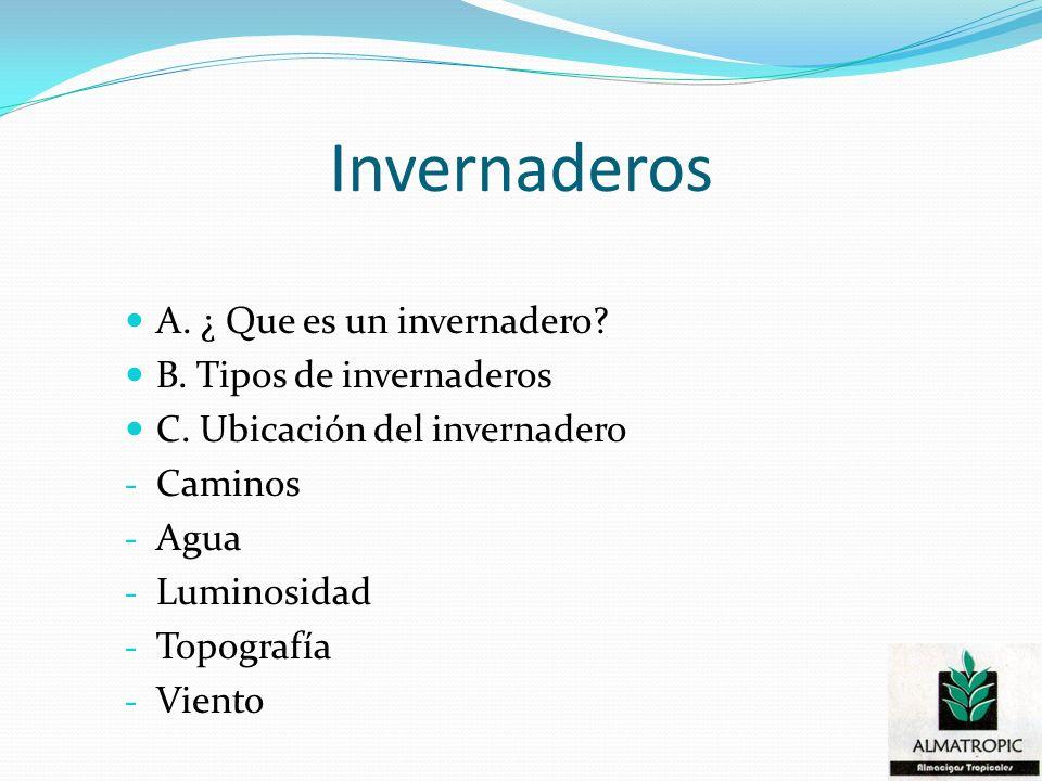 Invernaderos A. ¿ Que es un invernadero? B. Tipos de invernaderos C. Ubicación del invernadero - Caminos - Agua - Luminosidad - Topografía - Viento