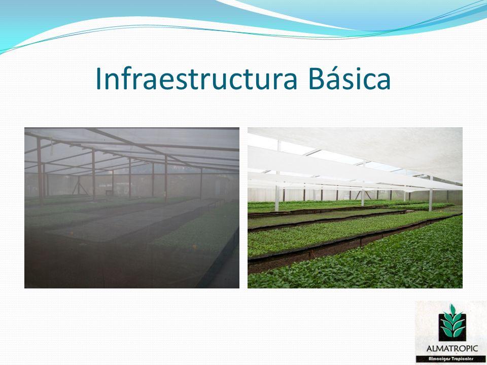 Infraestructura especifica