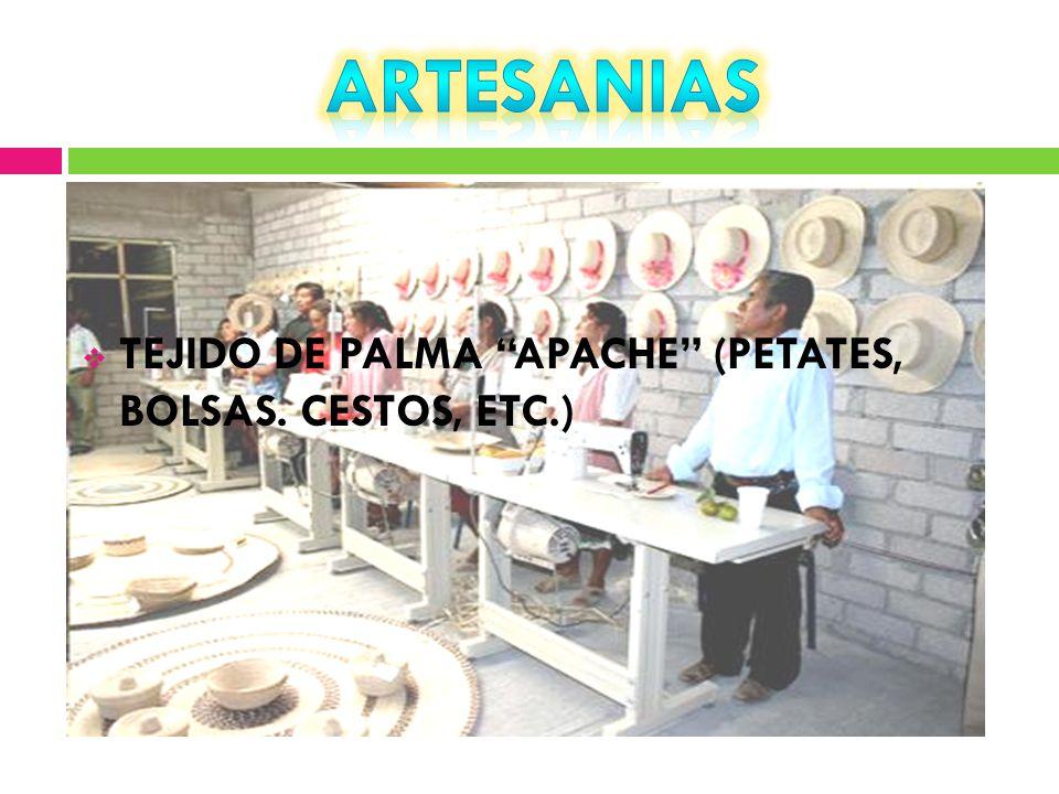 TEJIDO DE PALMA APACHE (PETATES, BOLSAS. CESTOS, ETC.)
