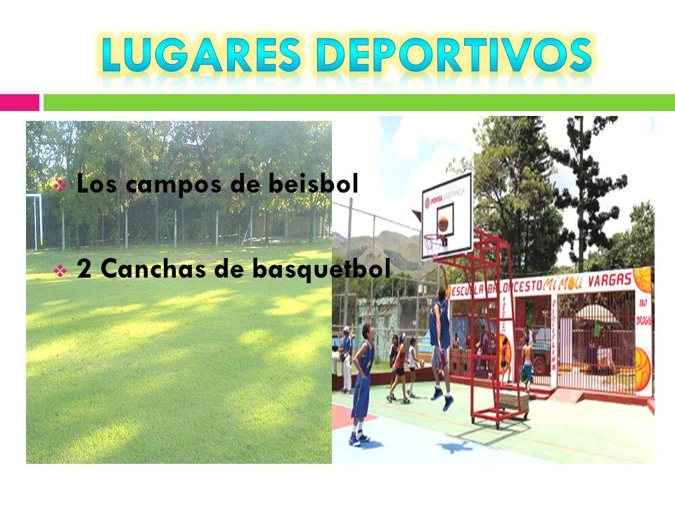 Los campos de beisbol 2 Canchas de basquetbol
