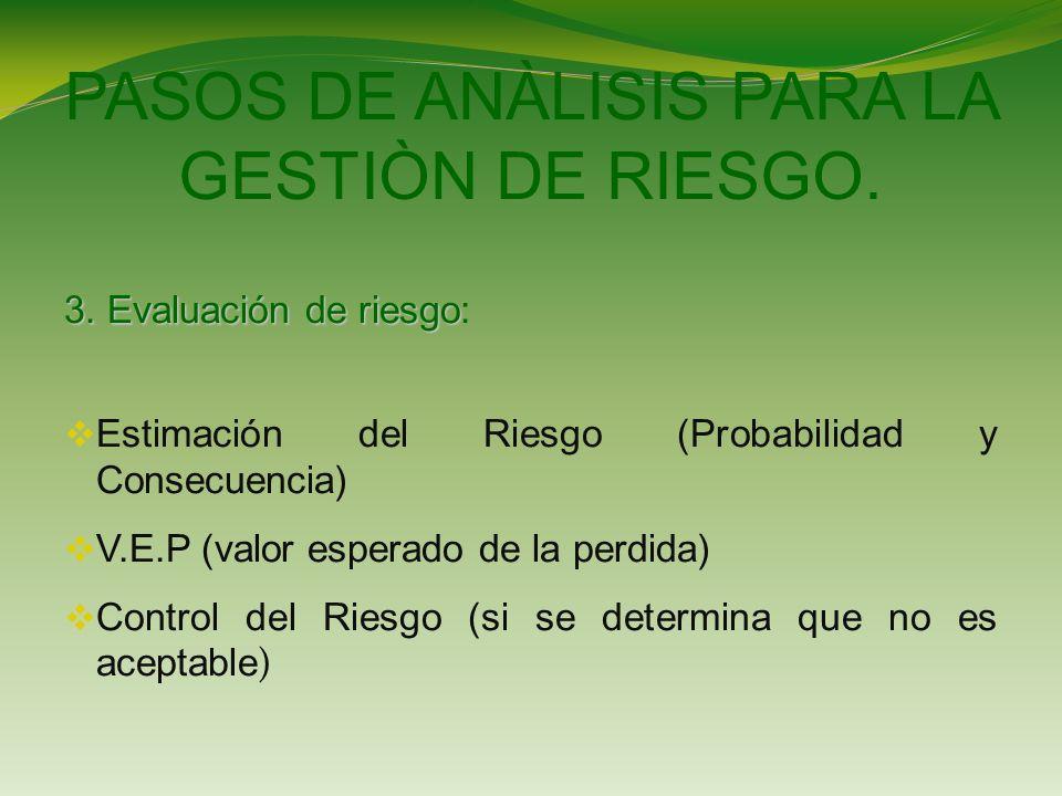 PASOS DE ANÀLISIS PARA LA GESTIÒN DE RIESGO.3. Evaluación de riesgo 3.
