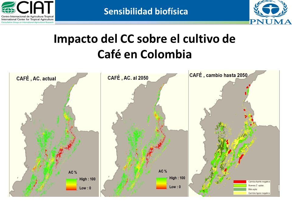 Impacto del CC sobre el cultivo de Café en Colombia Sensibilidad biofísica
