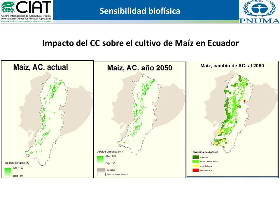 Impacto del CC sobre el cultivo de Maíz en Ecuador