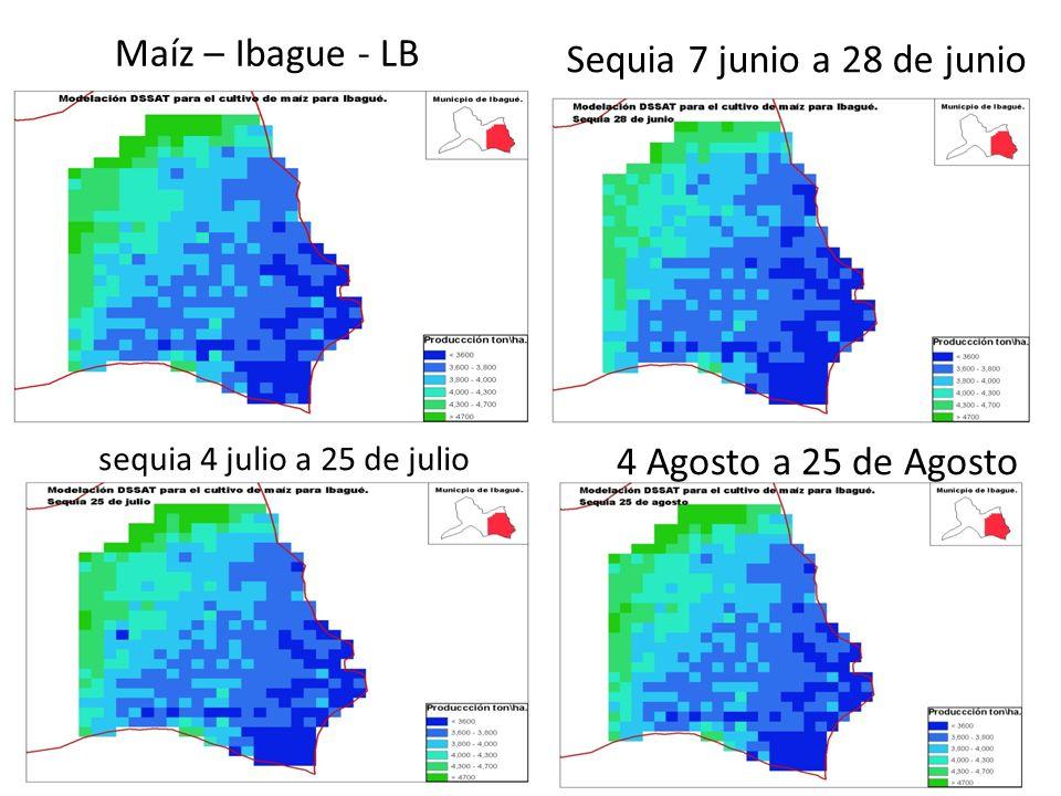 Maíz – Ibague - LB Sequia 7 junio a 28 de junio sequia 4 julio a 25 de julio 4 Agosto a 25 de Agosto