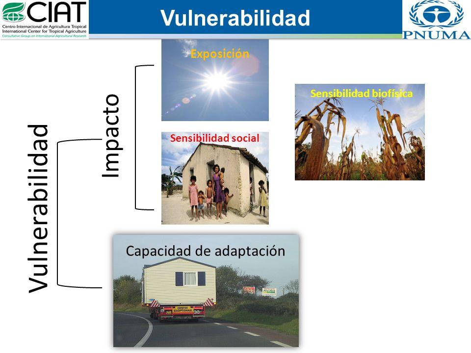 Vulnerabilidad Sensibilidad social Impacto Vulnerabilidad Capacidad de adaptación Exposición Sensibilidad biofísica