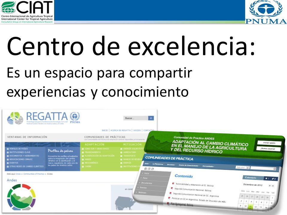 Centro de excelencia: Es un espacio para compartir experiencias y conocimiento